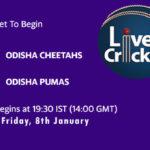 ODC vs OPU Live Score, Odisha Cricket League, ODC vs OPU Scorecard Today, ODC vs OPU Lineup
